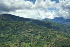 The Yungas, Bolivia Royalty Free Stock Photos