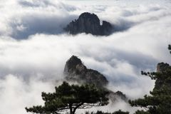 Yunhai, Huangshan Scenic Area, China stock image