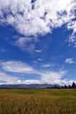 Yunnan Δάλι της Κίνας Στοκ φωτογραφίες με δικαίωμα ελεύθερης χρήσης