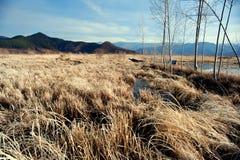 Yunnan, China, Lugu Lake scenery Royalty Free Stock Photos