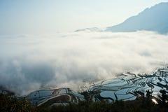 Yunnan, China, Yuanyangtitian,  Royalty Free Stock Photography