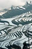 Yunnan, China, Yuanyangtitian, Stock Photos