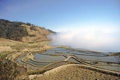 Yunnan, China, Yuanyangtitian,  Royalty Free Stock Images