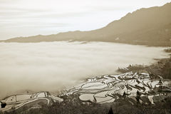 Yunnan, China, Yuanyangtitian, clouds around, the Stock Images