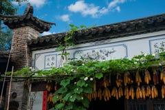 Yunnan Dali Bai Dragon City Farm Fotos de archivo