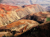 Yunnan dongchuan red field Stock Photos