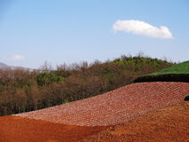 Yunnan dongchuan red field Royalty Free Stock Image