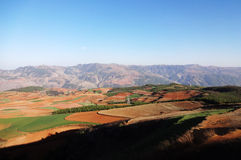 Yunnan dongchuan red field Royalty Free Stock Photography