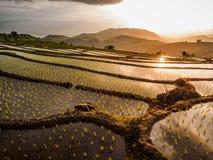 Yunnan Kina solnedgång royaltyfria bilder
