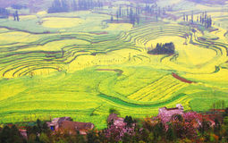 Yunnan Landscape Stock Photo