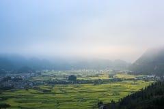 Yunnan-Landschaft des Rapssamenblumenfeldes Lizenzfreies Stockbild