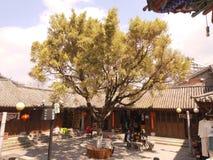 yunnan stockbilder