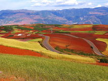 Yunnan red soil dry. Dongchuan County is located in China's Yunnan province, where the soil contains large amounts of iron, the color is red soil, the main crop royalty free stock image