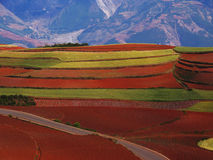 Yunnan red soil dry Royalty Free Stock Photo
