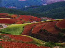Yunnan red soil dry Royalty Free Stock Images