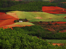 Yunnan red soil dry Stock Photos