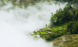Yunnan rice-paddy terracing Stock Photos