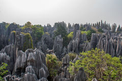 Yunnan Stone Forest Stock Photos