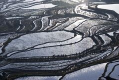 Yunnan Terraced Rice Fields, China. Stock Images