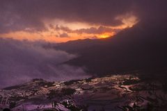 Yunnan Yuanyang terraces and more depending on the tree Stock Photo
