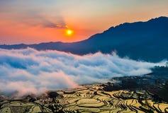 Yunnan Yuanyangtitian mehr durch Baumlandschaft Stockbild
