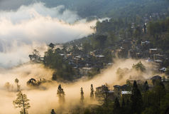 Yunnan Yuanyangtitian mehr durch Baumlandschaft Lizenzfreies Stockbild