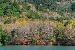 Yunokomeer in de herfst, Nikko, Japan stock foto