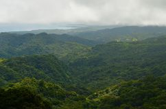 Yunque PR Royalty Free Stock Photos