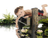 Yup!  The Water's Warm. An adorable preschool swimmer laying on an old dock, checking the water's temp with his finger.  On a white background Royalty Free Stock Images
