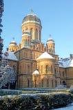 Yuriy Fedkovych Chernivtsi Staatsangehörig-Universität stockfoto