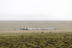 Yurt Camp on Song Kul Lake in Kyrgyzstan. Asia Royalty Free Stock Image