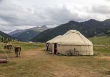 Yurt in Central Asian Veld. Traditional Mongol Nomad Housing assembled on Green Meadow among High Mountain Hills in Kyrgyzstan and a Bicycle lean on it and Cows Stock Photography