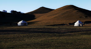 Yurt do Mongolian Fotos de Stock