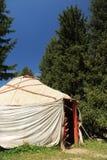 Yurt entre abetos Imagen de archivo libre de regalías