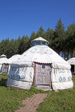 Yurt in the grassland Stock Image