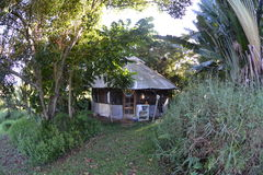 Yurt, jungle background, Fisheye Stock Photo