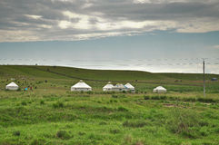 Yurt - Nomad's tent in the grassland Royalty Free Stock Image