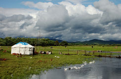 A yurt by stream. Under the cloudy sky  there is a beautiful white yurt with horses and cattle and ducks around it Stock Photo
