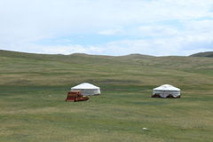 Yurt Village Mongolia Stock Images