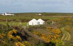 Yurt-Zelt auf dem Gebiet Lizenzfreies Stockbild