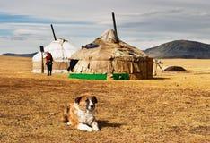 Yurta in Mongolian desert Royalty Free Stock Photos