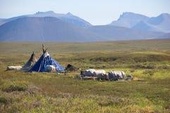 Yurtas de Nenets na tundra polar Imagens de Stock