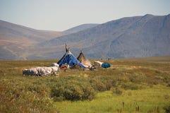 Yurtas Nenets в приполюсной тундре Стоковая Фотография