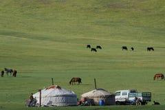 Yurts in de steppe Royalty-vrije Stock Foto's