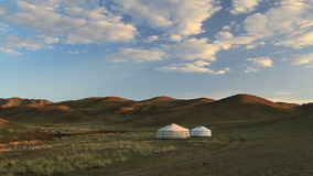 Yurts in the desert at sunset. Mongolian steppe.  stock video