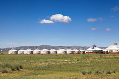Yurts on grassland Royalty Free Stock Images