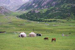 Yurts and horses in Kyrgyzstan. Landscape national park Beshtash. Yurts and horses in Kyrgyzstan Royalty Free Stock Photos