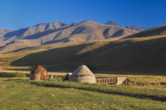 Yurts in Kyrgyzstan. Traditional yurts on green grasslands in Kyrgyzstan Royalty Free Stock Images