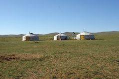 Yurts in Mongolia Royalty Free Stock Image