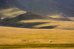 Yurts on Son-Kul Lake. Picture during my trip around the Kyrgyzstan Royalty Free Stock Photos